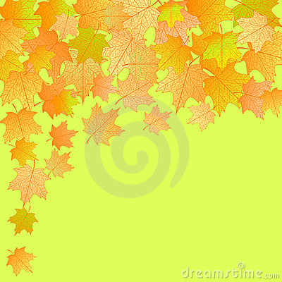 Vector autumn background.