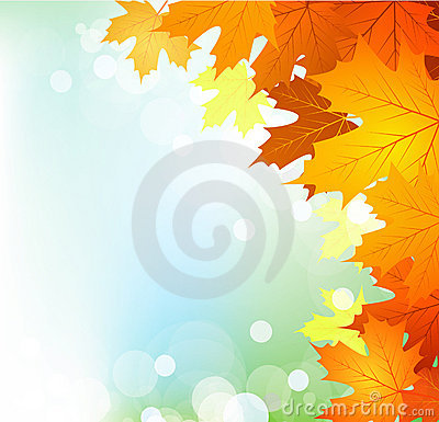 Vector autumn leaves on a bright sunny background