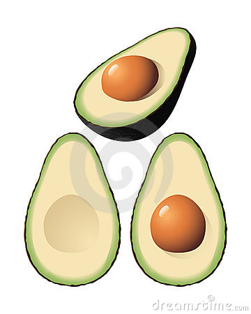 Vector Avocado