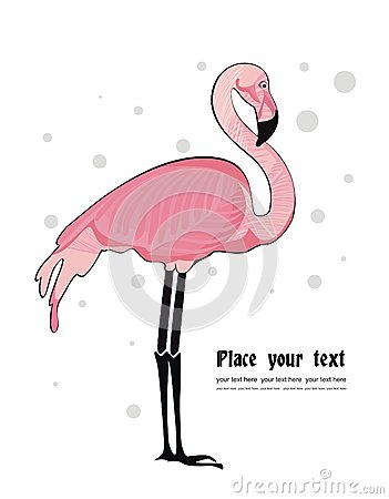Vector background with flamingo