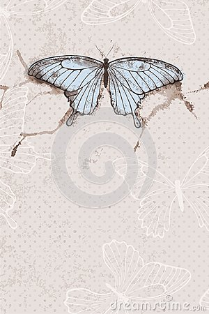 Vector background with watercolor butterfly