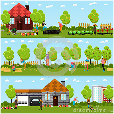 Vector Banners Of Gardening Horticulture Stock Vector Image