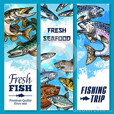 Free Vector Banners Of Fishing Trip And Fish Catch Stock Photos - 92009183