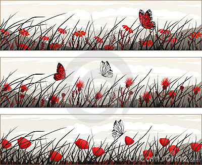 Vector banners with wild flowers and butterflies