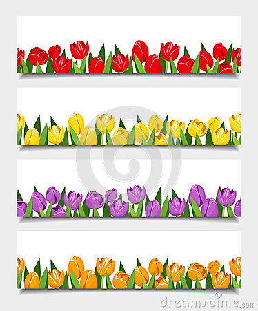 Free Vector Banners With Tulip Flowers. Stock Image - 40648551