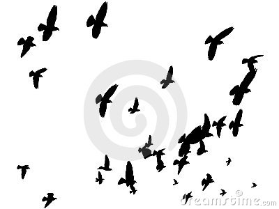 Vector Birds in the Sky - Peace to the World