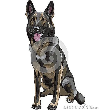 vector Black dog German shepherd breed