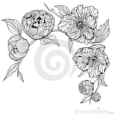 Vector Black and white background with flowers