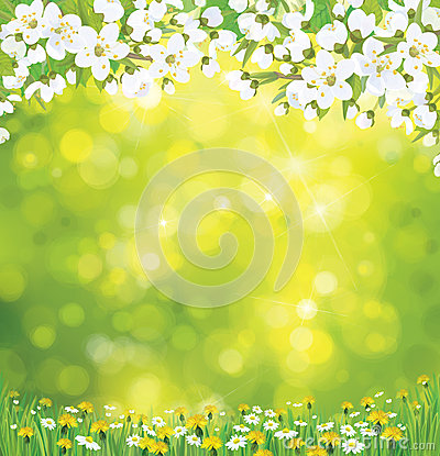 Free Vector Blossoming Tree On Spring Background. Royalty Free Stock Photography - 37417387