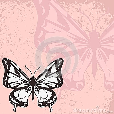 Vector card with butterfly