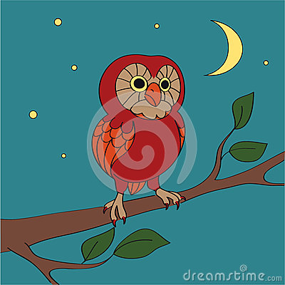 Vector cartoon night owl