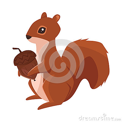 Vector cartoon style illustration of squirrel with acorn Vector Illustration