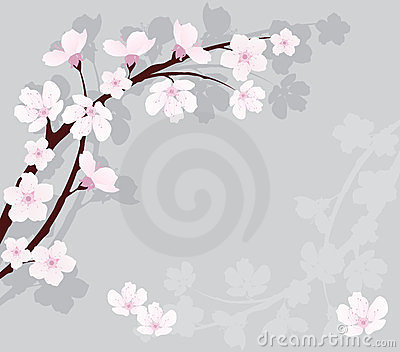 vector cherry branch on gray background