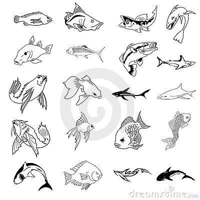 Vector Collection of 30 fish types