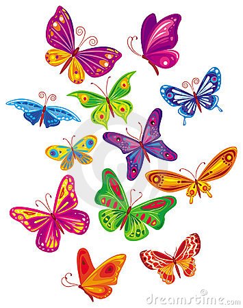 Vector colorful butterfly s set