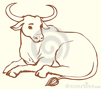 Vector contour illustration of lying cow with big horns