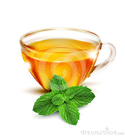 Vector cup of tea with mint leaves