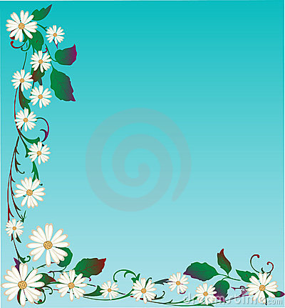 Vector Daisy Background