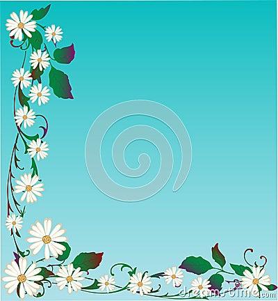 Vector Daisy Background
