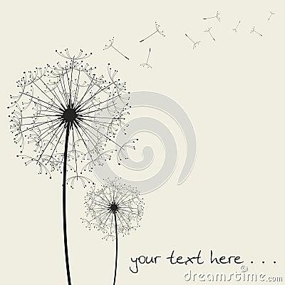 Vector dandelions...