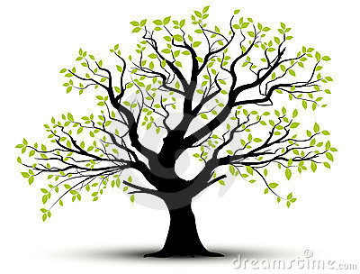 Vector decorative tree and green leaves