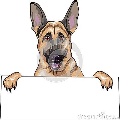 vector Dog German shepherd breed smiles