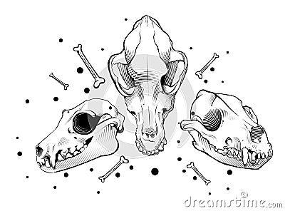 Vector Dog Skull. Engr...