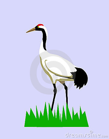 Vector drawing of the crane