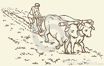Vector Drawing. Primitive Agriculture. Peasant Treated ...