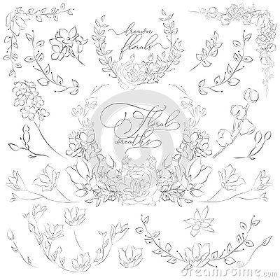 Free Vector Drawn Plants And Flowers, Wreaths, Corners, Branches Stock Images - 128228624