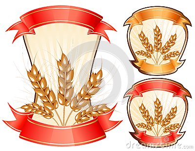 Vector ears of wheat.
