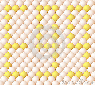Vector Egg background