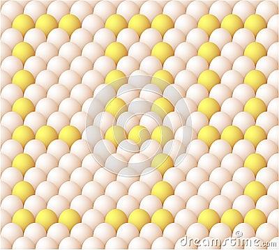 Vector Egg background