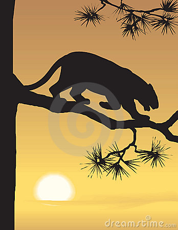 Vector evening landscape illustration
