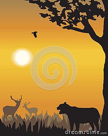 Vector evening landscape illustration