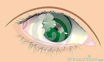 Vector eye with flower shadow inside