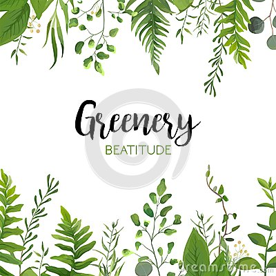 Free Vector Floral Greenery Card Design: Forest Fern Frond, Eucalyptu Stock Photos - 107291253
