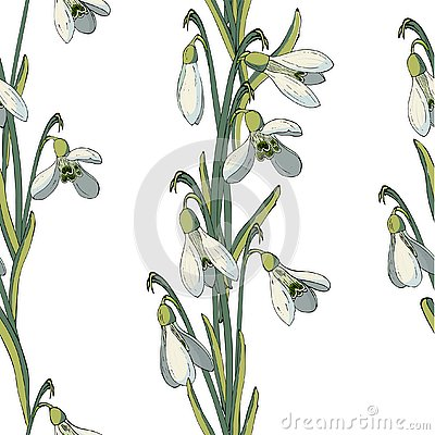Vector floral seamless pattern with snowdrops Vector Illustration