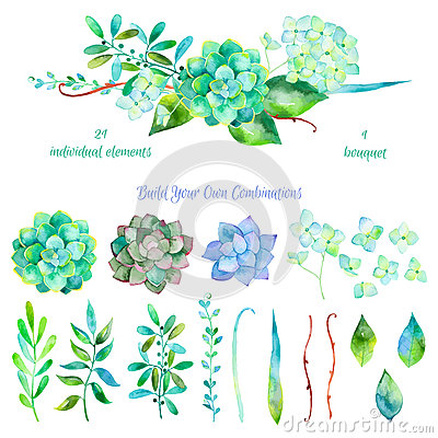Free Vector Floral Set.Colorful Floral Collection With Leaves And Flowers Stock Images - 55061044
