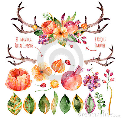 Free Vector Floral Set.Colorful Purple Floral Collection With Leaves,horns And Flowers,drawing Watercolor+colorful Floral Bouquet With Stock Photography - 60004882