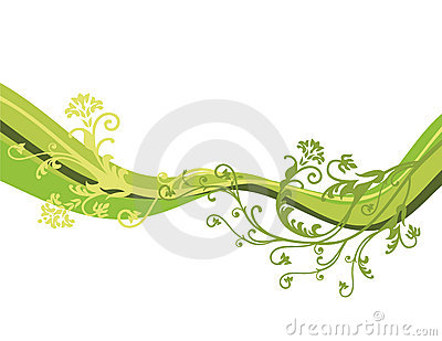 Vector flowers isolated