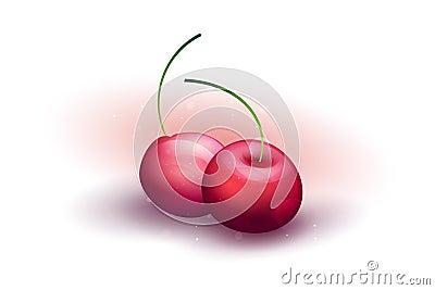 Vector fresh cherries on a white background. EPS10