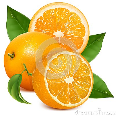 Fresh ripe oranges with leaves.