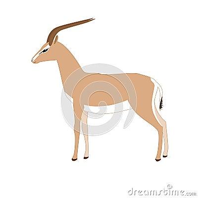Vector gazelle