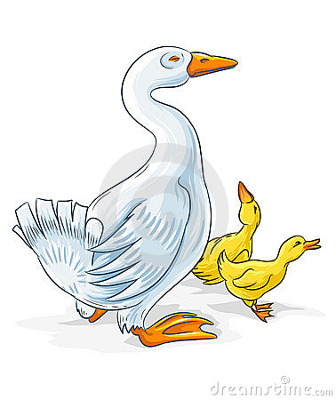 Free Vector Goose Mother With Gosling Kids Royalty Free Stock Image - 6724336