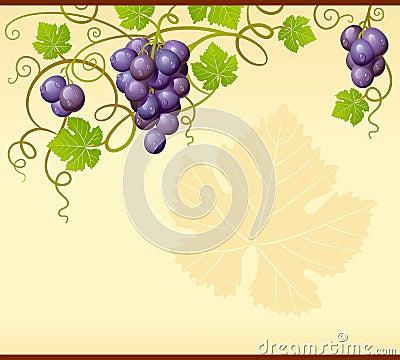 Vector grape ornament