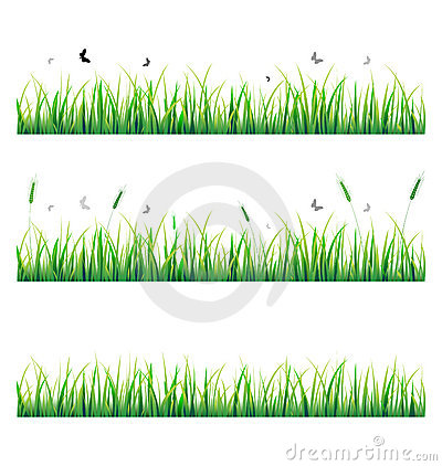 Vector grass with butterfly