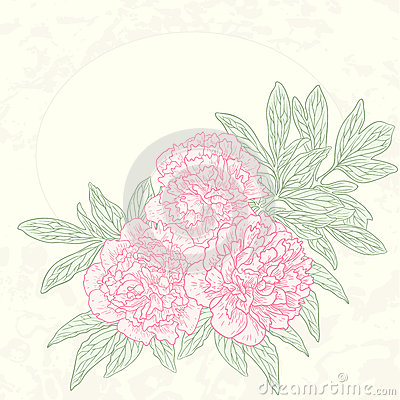 Vector greeting card with peonies.