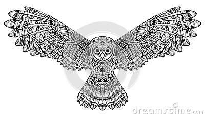 Flying owl drawings black and white - photo#20