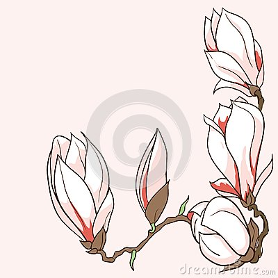 vector hand drawn magnolia flowers frame stock illustration image 38872027. Black Bedroom Furniture Sets. Home Design Ideas